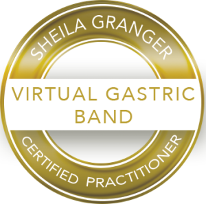Virtual Gastric Band